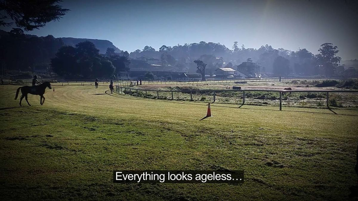 Someone on horseback watching other horses in a pasture
