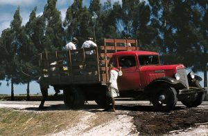 A woman stands aside a truck filled with workers