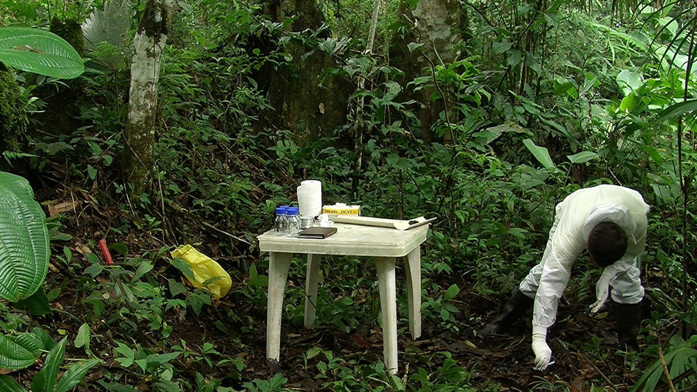 A table in the forest with someone nearby collecting samples from the forest floor